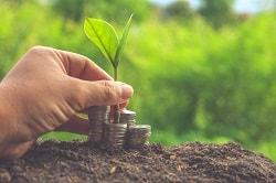 הלוואות מיידיות לעסקים – כל מה שצריך לדעת